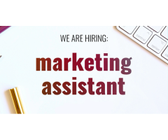 Assistant(e) marketing